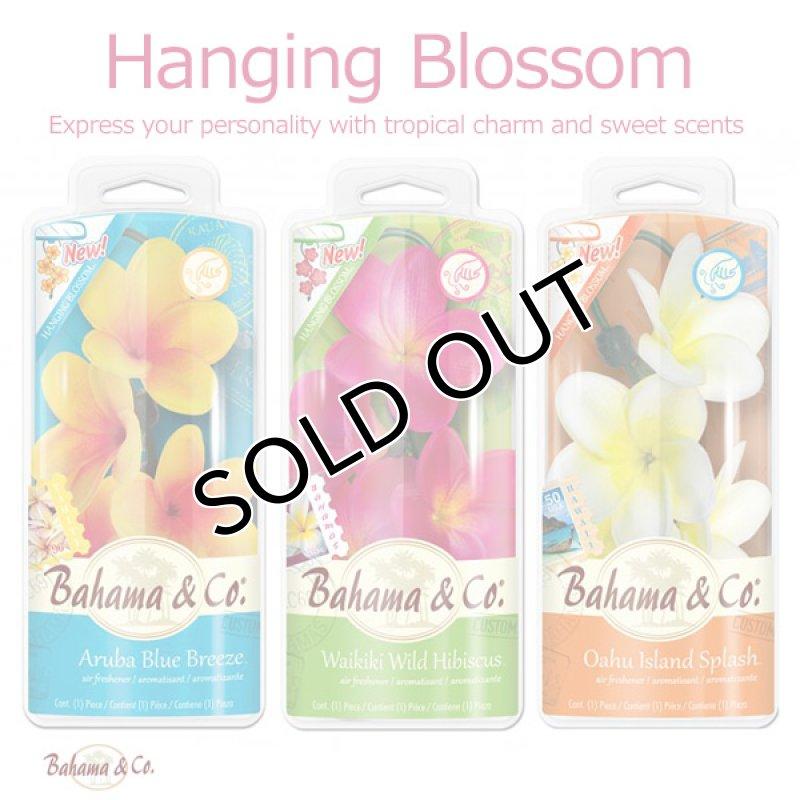 画像1: エアーフレッシュナー / Bahama&Co. / Hanging Blossom (1)