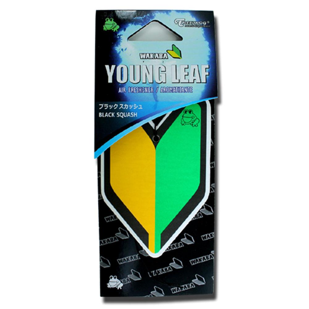 画像1: エアーフレッシュナー / YOUNG LEAF / Black Squash (1)